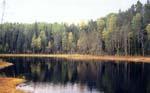 Великий Андомский Водораздел.<BR> Автор: А. Шелехов, н.с. лаборатории экологии лесных ландшафтов Bнститута леса