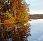 """&quotTolvojarvi"""" PA. Lake Kuikajarvi<BR> Photo by: A. Shelekhov, researcher, Laboratory for forest landscape ecology, Forest Research Institute"""