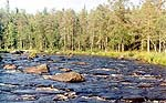 Kalevalsky park. Kaba river.<BR> Photo by: A. Shelekhov, researcher, Laboratory for forest landscape ecology, Forest Research Institute