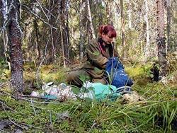 Анна Карпечко защитила диплом в 1999 году при Институте леса и продолжила работу в избранном направлении, став его аспиранткой и успешно защитив в 2005 году кандидатскую диссертацию