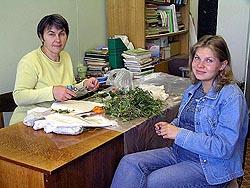 Подготовка образцов для выполнения исследований в период преддипломной практики Анны Устиновой (2004 г.)