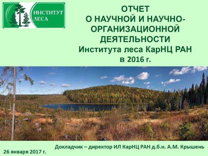 отчет по ландшафтной практике