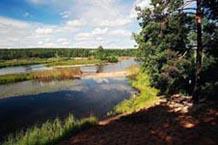 Вид из устья р.Шокша на п. Кварцитный