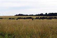 Аграрный пейзаж