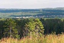 Вид с Шокшинской гряды на д. Вехручей