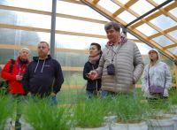 Участники пресс-тура, эекскурсия на Агробиологическую станцию КарНЦ РАН, 31.07.2020