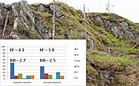 Почвы с основными подстилающими горными породами